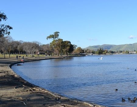 800px-Lake_Elizabeth_in_Fremont,_California_(cropped)
